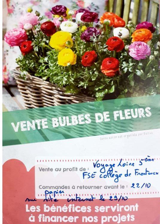 vente fleurs.JPG